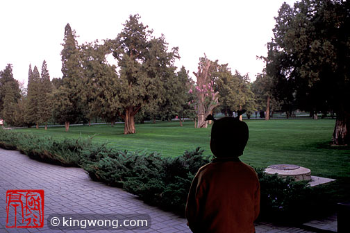 天坛公园 Tiantan (Temple of Heaven) Park