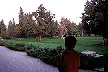 Picture of 天坛公园 Tiantan (Temple of Heaven) Park
