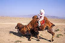 Picture of 嘉峪关 - 骆驼女人 Jiayuguan (Jiayu Pass) -  Camel and Woman