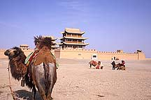 Picture of 嘉峪关 - 骆驼,马 Jiayuguan (Jiayu Pass) - Camels and Horses