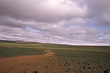 Picture of 呼市至希拉穆仁 From Huhehaote City to Xilamuren Grassland