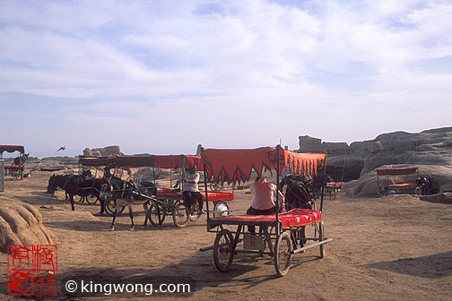 高昌故城 - 驴车 Gaochang Ruins - Donkey Cart